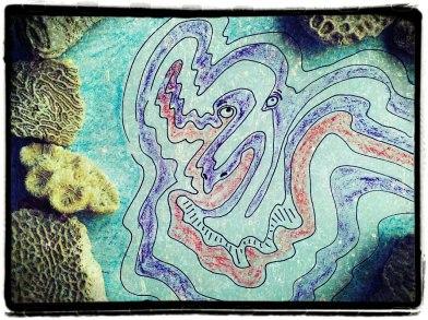Sea Creature 07012013