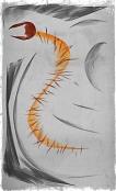 Centipede (c) Johan Schaeffer